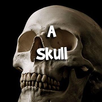 skull-c